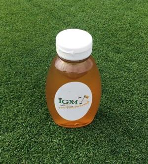 Honey-Bees Saving the Honeybees